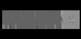 ireliev-walmart-logo
